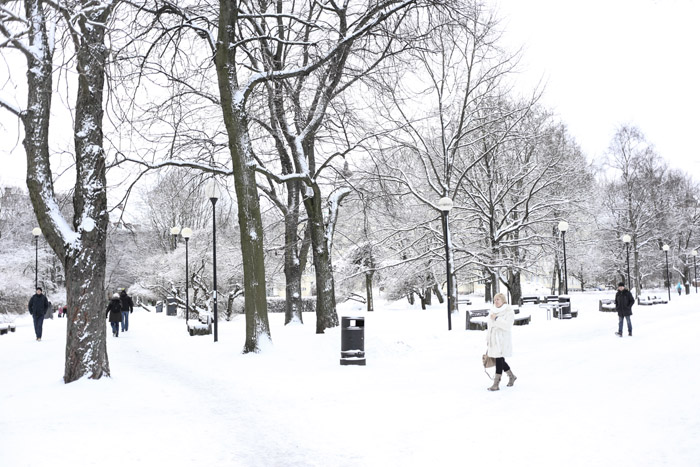 Visitar Tallinn a l'hivern