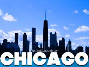 chicago rutabaobab