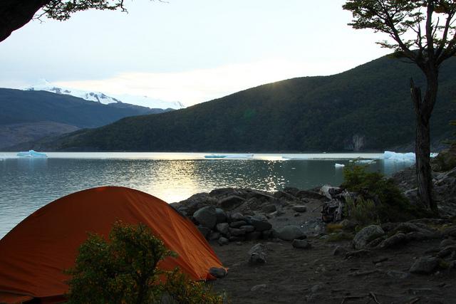 patagonia rutabaobab